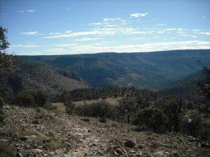 Bajada El Aguijón (el camino que sube al fondo lo hace desde Tres Molinos)