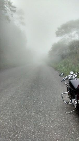 Las partes a mayor altitud de la ruta son muchas veces con niebla.